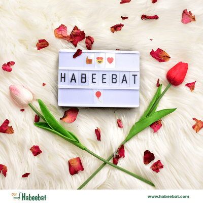 Habeebat Cover Image a