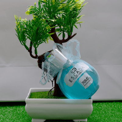 Habeebat_Nasim_Escada_Perfume_Oil